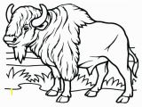 American Bison Coloring Page Bison Coloring Page American Pages Disney Easy Herd for Kids Nice