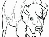 American Bison Coloring Page Bison Coloring Page Bison Coloring Page Picture A 4 Kids Pages