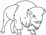 American Bison Coloring Page Bison Coloring Page Pages Draw A Buffalo Taking Care Her Baby P