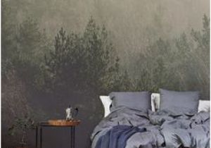 Amidst the Mist Wall Mural 175 Best Amazing Wallpaper Images