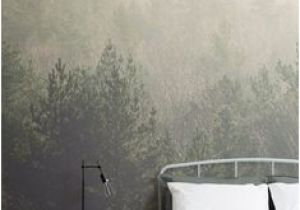 Amidst the Mist Wall Mural 37 Best Greyelle Fice Images In 2019