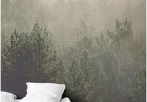 Amidst the Mist Wall Mural Die 7 Besten Bilder Von Wallpaper
