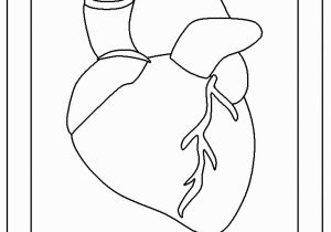 Anatomical Heart Coloring Pages Coloring Pages the Human Heart for Kidskidsfreecoloring Net