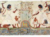 Ancient Egypt Wall Murals Pin On Arte Egipcio