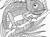 Animal Camouflage Coloring Pages Printable Adult Coloring Page Animal In 2020
