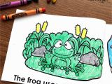 Animal Camouflage Coloring Pages Printable Animals In Camouflage Printable Booklet A Kinderteacher Life