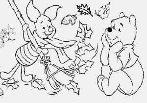 Animal Coloring Pages Hard 12 Best Arctic Animals Coloring Pages