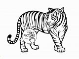 Animal Coloring Pages Printable 28 Collection Of Real Animal Coloring Pages