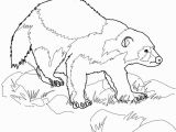 Animal Coloring Pages Printable Wolverine Animal Coloring Page