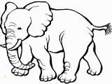 Animal Coloring Pages Printable Zoo Animals Coloring Pages Yintan