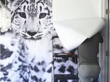 Animal Print Wall Murals Snow Leopard Wallpaper Mural Diy