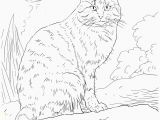 Animal Printable Coloring Pages Printable Animal Coloring Pages Printable Animal Coloring Pages Best