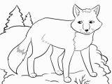Arctic Animal Coloring Pages 20 Unique Arctic Fox Coloring Page