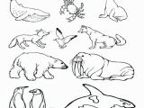 Arctic Animal Coloring Pages Free Printable Arctic Animals Coloring Pages Farm Animal Flowers In