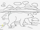 Arctic Animal Coloring Pages Printable Arctic Animal Coloring Pages Fresh Polar Bear Cute Drawing