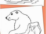 Arctic Animals Coloring Pages 197 Best Eskimos and Polar Animals Images On Pinterest In 2018