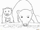 Arctic Animals Coloring Pages Polar Bear Coloring Pages Sample thephotosync
