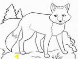 Arctic Fox Coloring Pages 97 Best Arctic Fox Images On Pinterest