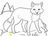 Arctic Fox Coloring Pages 97 Best Arctic Fox Images On Pinterest