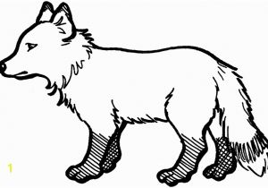 Arctic Fox Coloring Pages Arctic Fox Coloring Page – Nlli Coloring