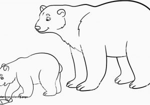 Arctic Fox Coloring Pages Arctic Fox Coloring Pages Elegant 27 Polar Bear Coloring Page – Best