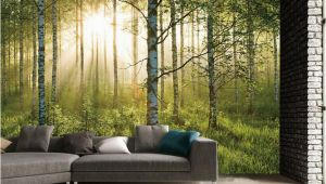 Argos Wall Mural forest 1 Wall forest Giant Mural Sportpursuit