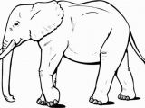 Asian Elephant Coloring Page Coloring Pages Elephants