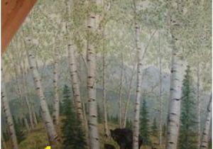 Aspen Tree Wall Mural 16 Best aspen Mural Images