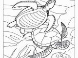 Australian Outback Coloring Pages Ocean Animals Coloring Pages Under the Ocean Drawing at Getdrawings
