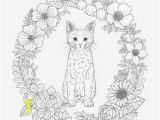 B is for butterfly Coloring Page butterfly Coloring Pages for Adults Beautiful Graphy Dltk S