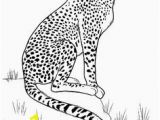 Baby Cheetah Coloring Pages 1081 Best 30 Cute Animal Coloring Pages Images