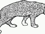 Baby Cheetah Coloring Pages Cheetah Coloring Page Animals town Color Sheet Coloring