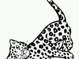Baby Cheetah Coloring Pages Cute Baby Cheetah Coloring Pages Real Cheetah Coloring Pages