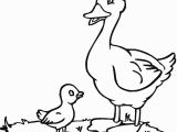 Baby Duck Coloring Pages to Print Baby Duck Coloring Page
