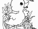 Baby Duck Coloring Pages to Print Cute Baby Duck Coloring Pages Google Search