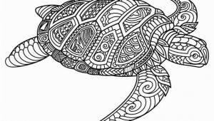 Baby Turtle Coloring Pages Image Result for Free Mandala Coloring Page with A Lizard or