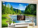 Backlit Wall Murals Custom 3d Wallpaper Nature Landscape Graphy Background