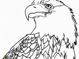 Bald Eagle Coloring Page 12 Unique Bald Eagle Coloring Page