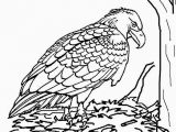 Bald Eagle Coloring Page Bald Eagle Coloring Page Best 23 Bald Eagle Coloring Page