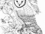 Barn Coloring Book Pages Owl Colouring Pages