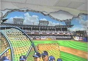 Baseball Stadium Wall Mural Hand Painted Wall Mural Ebbets Baseball Field by Muralist Bonnie