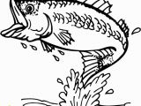 Bass Fish Coloring Pages Striped Bass Dying In Record Numbers at Jordan Lake Clip