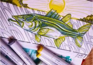 Bass Fishing Wall Murals Fly Fishing Art Pic by Kid Ocelos