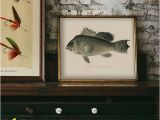 Bass Fishing Wall Murals Pin On Products
