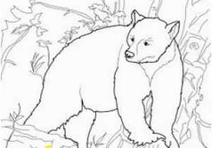 Bear In Cave Coloring Page 137 Best the Book Of the Night World Images On Pinterest