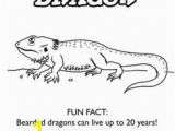 Bearded Dragon Coloring Pages 156 Best Bearded Dragon Images On Pinterest In 2018