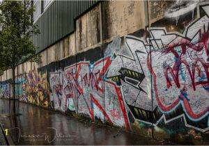 Belfast Peace Wall Murals Fine Art Graphy and Mixed Media Prints by Tl Wilson Graphy