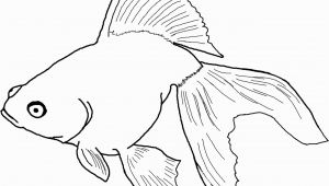 Betta Fish Coloring Pages Betta Fish Coloring Pages New Fish Coloring Pages for Adults New