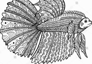 Betta Fish Coloring Pages Betta Fish Hand Drawn Coloring Page Stock Illustration