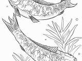 Betta Fish Coloring Pages Fish Coloring Pages for Adults Awesome Betta Fish Coloring Pages